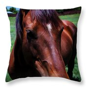 Hello  Throw Pillow by Charles Muhle