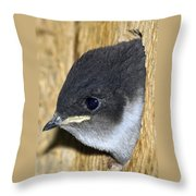 Hello Out There Throw Pillow