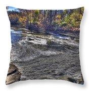 Henry Ford Estate Waterway Dearborn Mi Throw Pillow