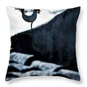 Herald Of The Dawn Throw Pillow