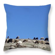 Herd In The Atlas Mountains 02 Throw Pillow