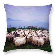 Herding Sheep, Inishtooskert, Blasket Throw Pillow