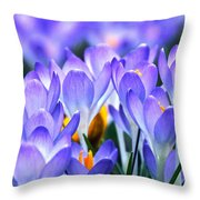 Here Come The Croci Throw Pillow