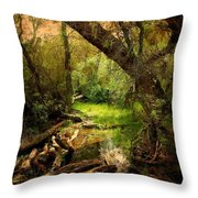 Here There Be Gnomes Throw Pillow