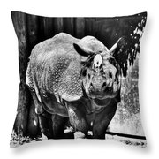 Heres Lookin At You  Kid Indian Rhino  Throw Pillow