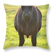 Here's The Beef Throw Pillow
