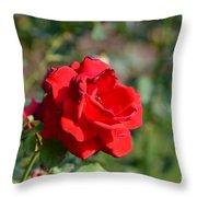 Hermosa Throw Pillow