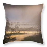 Heron Dawn Throw Pillow