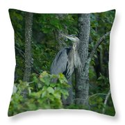 Heron On A Limb Throw Pillow
