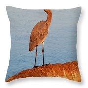 Heron On Palm Throw Pillow