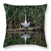 Heron Sunbath Throw Pillow