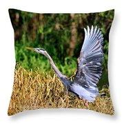 Heron Taking To Flight Throw Pillow