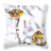Hey I Am Talking To You Throw Pillow