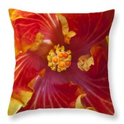 Hibiscus Center Throw Pillow