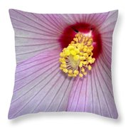 Hibiscus Closeup Throw Pillow