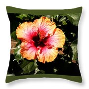 Hibiscus Flower Throw Pillow by Lisa Phillips
