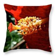 Hibiscus Highlight Throw Pillow