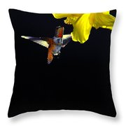 Hibiscus Hummer On Black Throw Pillow