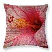 Hibiscus Pink Throw Pillow