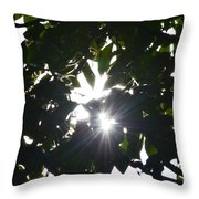 Hickory Triple Stars Throw Pillow
