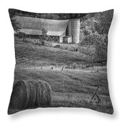 Hidden Away In Black And White Throw Pillow