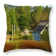 Hidden Barn Throw Pillow