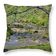 Hidden Creek Throw Pillow