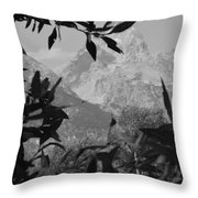 Hidden View Bw Throw Pillow