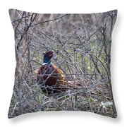 Hiding Pheasant Throw Pillow
