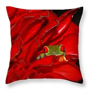 Hiding Throw Pillow