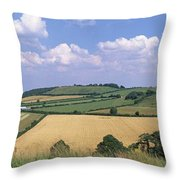High Angle View Of Patchwork Fields Throw Pillow