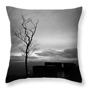 High On The Mountain Top Throw Pillow