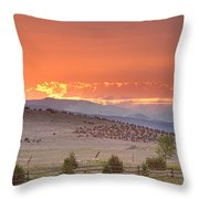 High Park Wildfire At Sunset Throw Pillow
