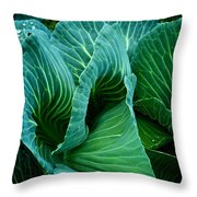 High Summer Cabbage Throw Pillow