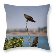 Higher Up The Tree Throw Pillow