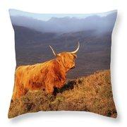 Highland Cattle Landscape Throw Pillow