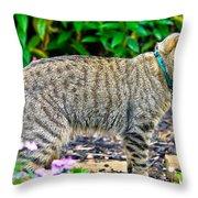 Highland Lynx Cat In Garden Throw Pillow