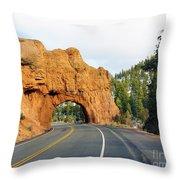 Highway 12 In Utah Throw Pillow