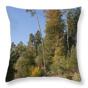 Hiking In The Forest Throw Pillow