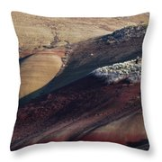 Hiking In The Painted Hills Throw Pillow