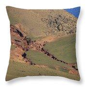 Hillside Erosion Caused By Run Throw Pillow
