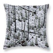 Hillside Pattern  Throw Pillow