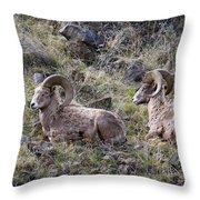 Hillside Rams Throw Pillow
