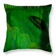 Hindsight Throw Pillow