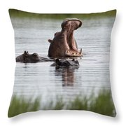 Hippo In Water Exhibits Aggresive Throw Pillow