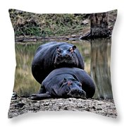 Hippos In Love Throw Pillow