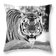 His Majesty Throw Pillow by Scott Pellegrin