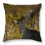 His Shadow  Throw Pillow