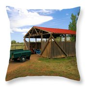 Historic Fruita District Barn Throw Pillow
