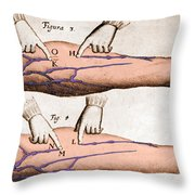 Historical Illustration Of Blood Vessels Throw Pillow